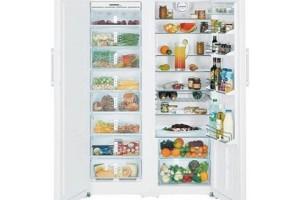 Как выбрать холодильник Liebherr для дома